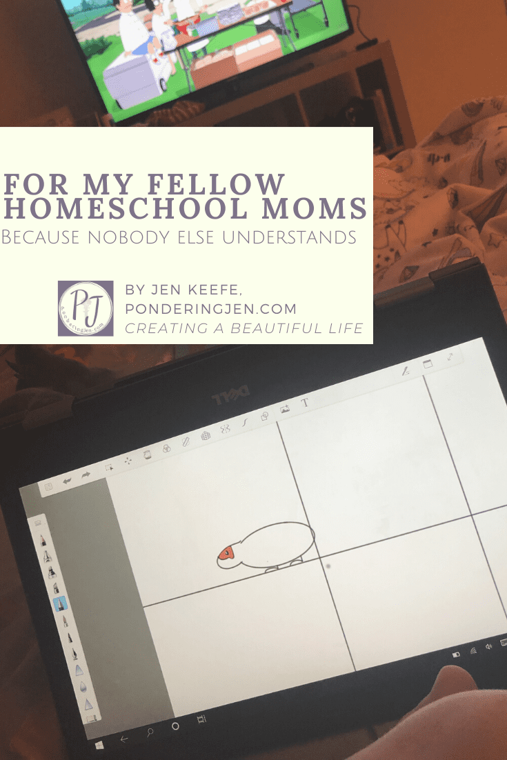 For Homeschool Moms Because Nobody Else Understands