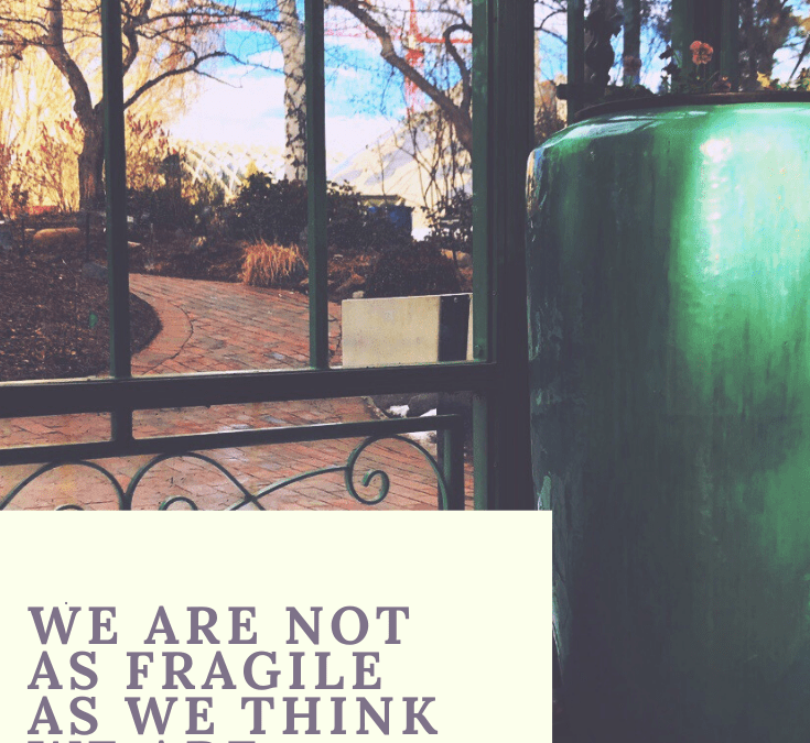 We Are Not as Fragile as We Think We Are